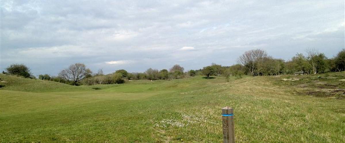 Palen graveren / frezen voor Golfclub